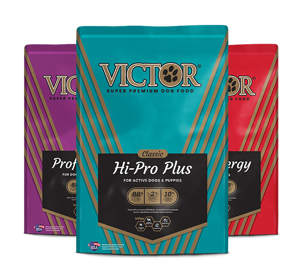 Group of three Victor Classic Multigrain dog food bags
