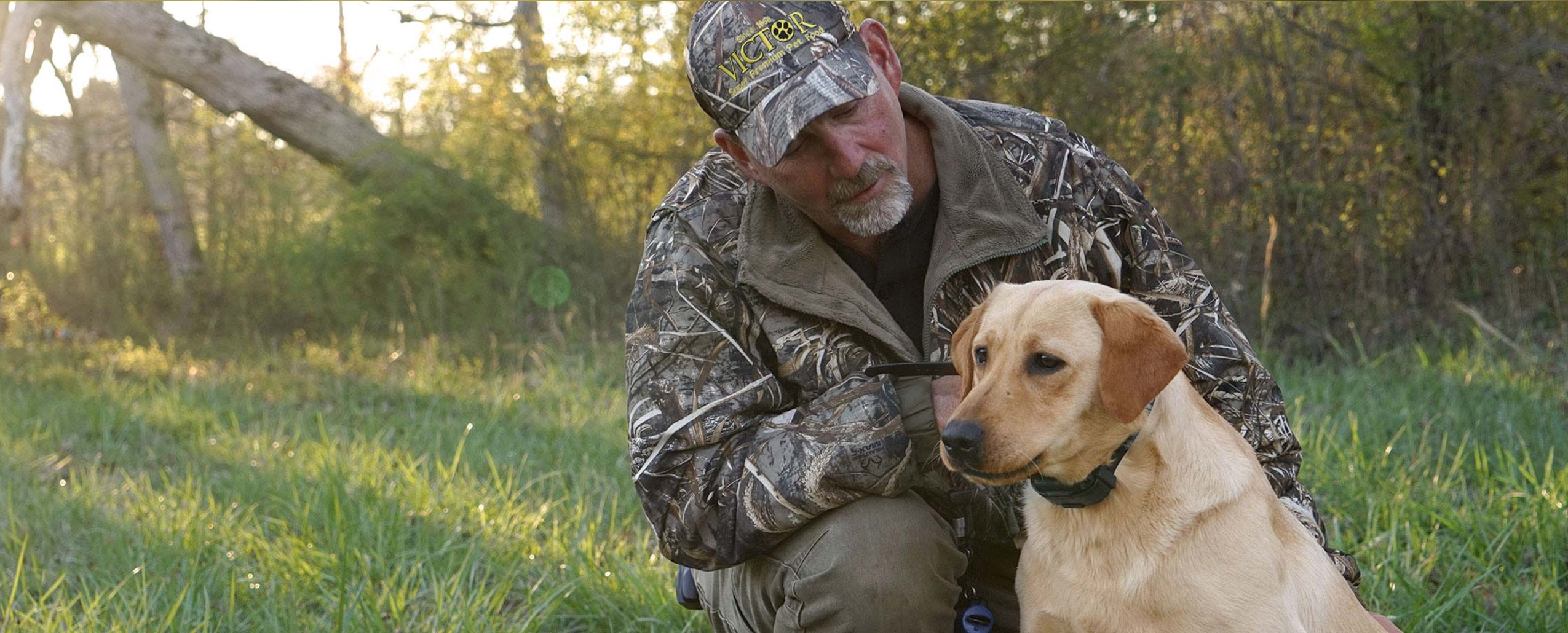 Dog trainer Shawn Sims with yellow labrador retriever dog in field