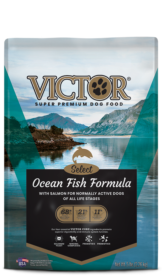Ocean Fish Formula With Salmon Victor Pet Food